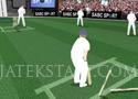 Cricket Challenge játékok