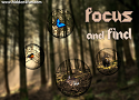 Focus and Find