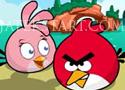 Angry Birds Hero Rescue mentsd meg a madarat