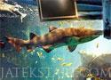 Aquarium New Season tisztítsd meg az akváriumot