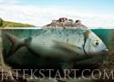 Big Catch horgászjátékok
