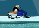 Catch that Penguin Játékok