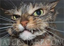Crazy Cats Jigsaw macskás kirakós játék