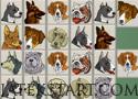 Dog Mahjong 2 Játékok