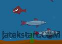 Fish Day játék