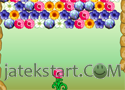 Flower Power játék
