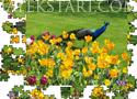 Jigsaw - Flowers And Peacock Játékok