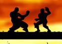 Martial Tricks játék