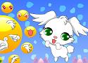 Rabbit Dressup