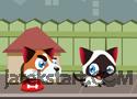 Run, Kitty, Run játék