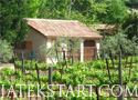 Secret Vineyard Játékok