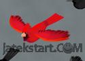 Young Cardinals játék