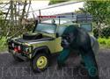 Zoo Parking parkolós játékok a legjobbak